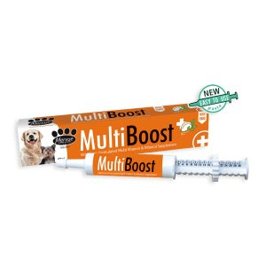MultiBoost Dog